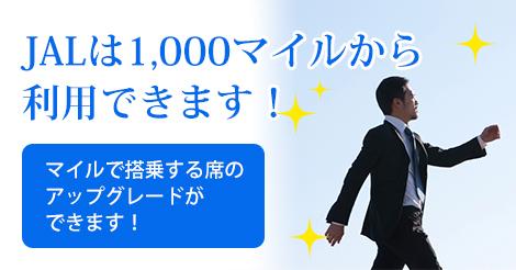 mile-tsukaimichi02